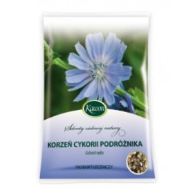 Chicory Traveller Root Radix Cichorii 50g digestive disorders
